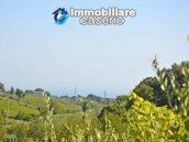 Country house with land and fruit trees for sale near the sea, Abruzzo 21