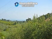 Country house with land and fruit trees for sale near the sea, Abruzzo 22