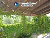 Country house with land and fruit trees for sale near the sea, Abruzzo 4