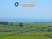 Rustic cottage sea view with land and fruit trees for sale in Abruzzo 4