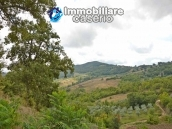 Country house with one hectare of land for sale in Palmoli, Abruzzo 15