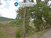 Country house with one hectare of land for sale in Palmoli, Abruzzo 16