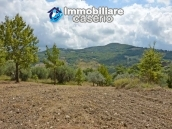 Country house with one hectare of land for sale in Palmoli, Abruzzo 17