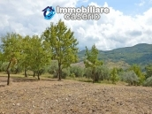 Country house with one hectare of land for sale in Palmoli, Abruzzo 18