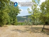 Country house with one hectare of land for sale in Palmoli, Abruzzo 19