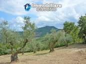 Country house with one hectare of land for sale in Palmoli, Abruzzo 20