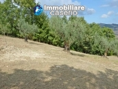 Country house with one hectare of land for sale in Palmoli, Abruzzo 26