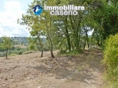 Country house with one hectare of land for sale in Palmoli, Abruzzo 27