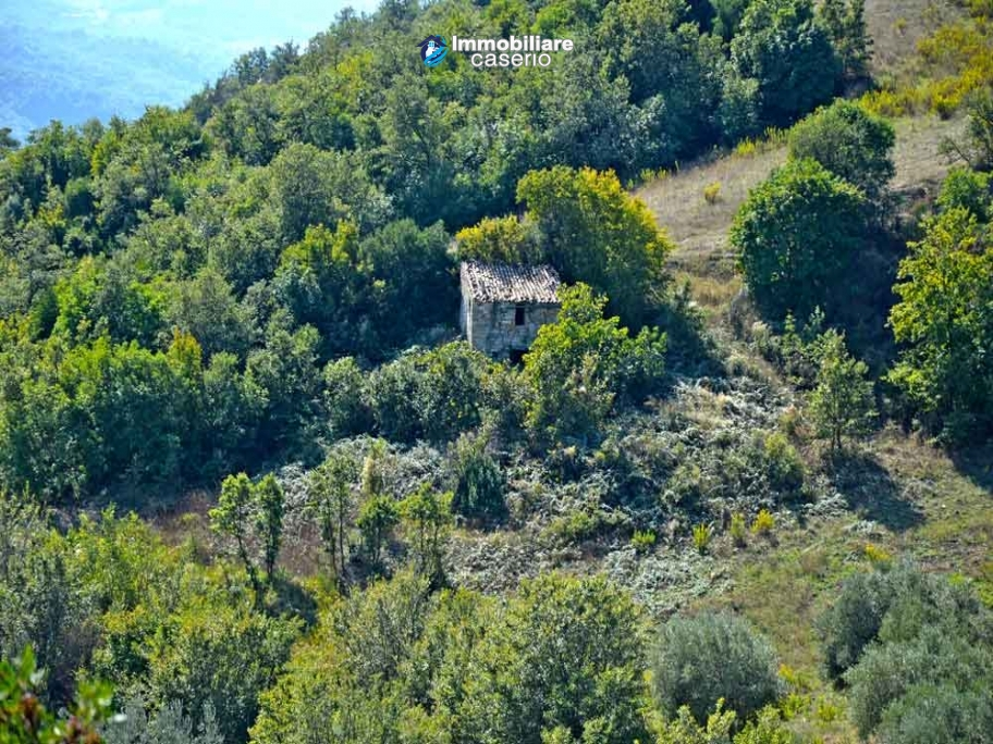 Rustic cottage with lake view for sale in Guardialfiera, Molise