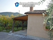 Habitable country houses with olive trees for sale in Guardialfiera, Molise 4