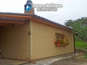 Habitable country houses with olive trees for sale in Guardialfiera, Molise 5