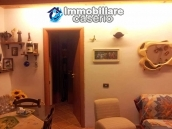 Habitable country houses with olive trees for sale in Guardialfiera, Molise 7