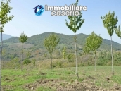 Land with cherry wood trees for sale in Palmoli, Abruzzo 7