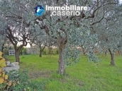 Rural house with charactere for sale with sea view in Casalbordino, Abruzzo 38