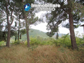 Country home with great view for sale in Furci, Abruzzo 7