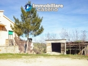 Rural property with 3 hectares and olive trees for sale in Teramo province, Abruzzo 3