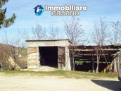Rural property with 3 hectares and olive trees for sale in Teramo province, Abruzzo 4