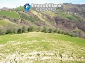 Rural property with 3 hectares and olive trees for sale in Teramo province, Abruzzo 5