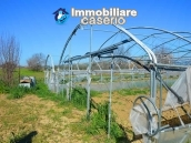 Big country house with land with sea view for sale in San Salvo, Abruzzo 15