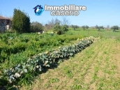Big country house with land with sea view for sale in San Salvo, Abruzzo 16