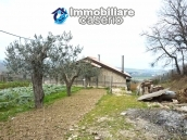 Big stone cottage with olive grove for sale in Cupello, close to the sea 15