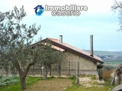 Big stone cottage with olive grove for sale in Cupello, close to the sea 16