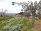Big stone cottage with olive grove for sale in Cupello, close to the sea 22