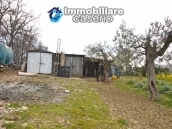 Big stone cottage with olive grove for sale in Cupello, close to the sea 23