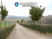 Big stone cottage with olive grove for sale in Cupello, close to the sea 24
