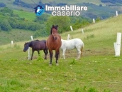 Amazing accommodation property for sale, ready for business in Molise 34