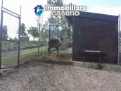 Amazing accommodation property for sale, ready for business in Molise 39