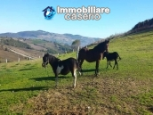 Amazing accommodation property for sale, ready for business in Molise 44
