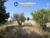 Semi-detached house with land and habitable for sale in Casalanguida, Abruzzo 19