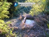 Properties for sale in Abruzzo - Ruin with land and water source for sale in Treglio 3