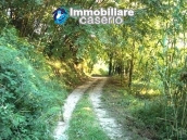 Properties for sale in Abruzzo - Ruin with land and water source for sale in Treglio 4