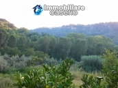 Properties for sale in Abruzzo - Ruin with land and water source for sale in Treglio 5