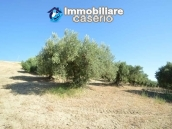 Farm house with 2 hectares of land with sea view for sale in Mafalda 10