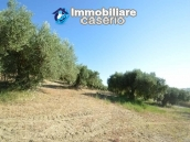Farm house with 2 hectares of land with sea view for sale in Mafalda 11
