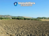 Garage with 3 hectares of land for sale a 2 km from Andriatic sea, Molise 7