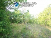 Stone cottage with well and hectares for sale in Abruzzo 12