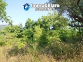 Stone cottage with well and hectares for sale in Abruzzo 14