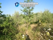 Stone cottage with well and hectares for sale in Abruzzo 15