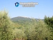 Stone cottage with well and hectares for sale in Abruzzo 17