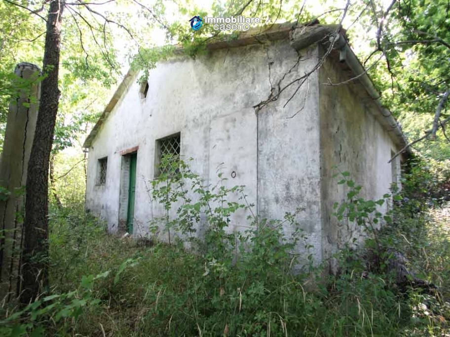 Stone cottage with well and hectares for sale in Abruzzo