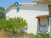 House with sea view, olive trees for sale near Nature Reserve of Punta Aderci. 5