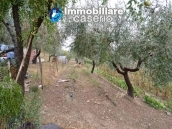 Crafts place with the possibility of turning into residential use with land for sale in Cupello, Italy 10