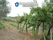 Crafts place with the possibility of turning into residential use with land for sale in Cupello, Italy 11