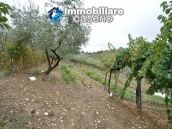 Crafts place with the possibility of turning into residential use with land for sale in Cupello, Italy 13