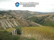 Rural house to renovate with 14.5 hectares for sale in Atri, Teramo 12