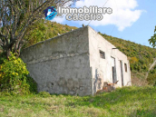 House with olive trees for sale in the Province of Chieti, Region Abruzzo 2